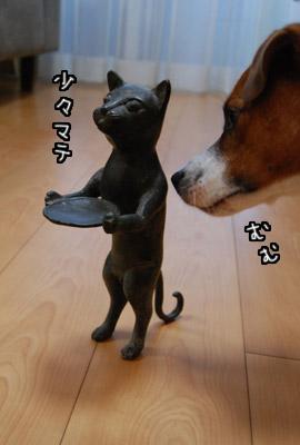 tate_03.jpg